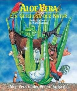 Aloe Vera ein Geschenk der Natur